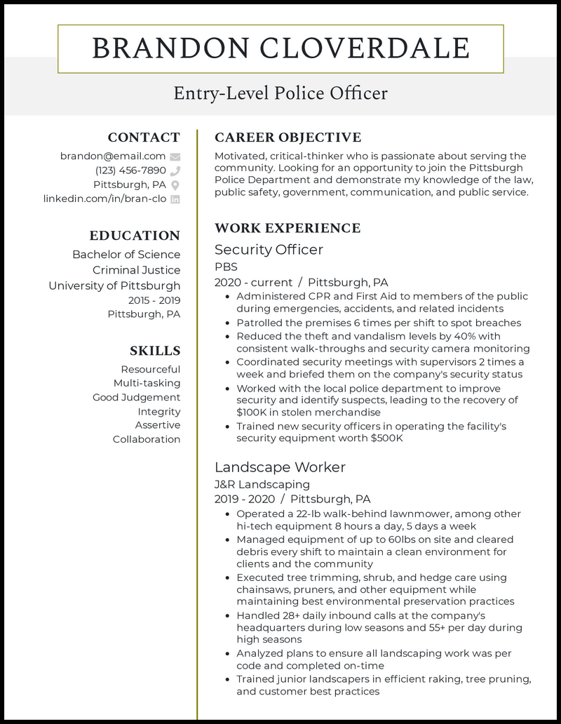 Entry Level Police Officer resume example
