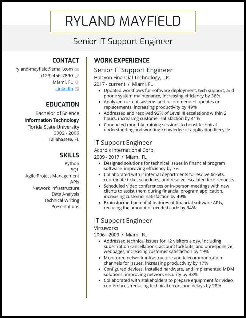 Professional IT resume example