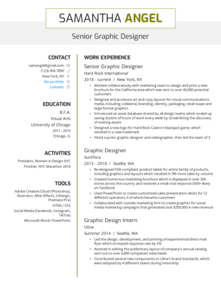 Senior-level resume template 3