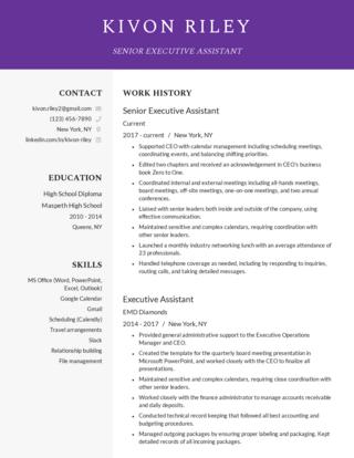 Senior-level resume template 1